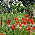 Jardin à la française ou jardin anglais ?