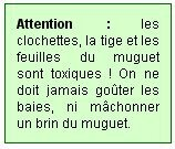 joyeux_1er_mai_attention_muguet