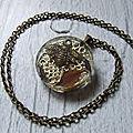 Le collier d'invisibilité fait par le medium kanhonou, le bon maître reconnu