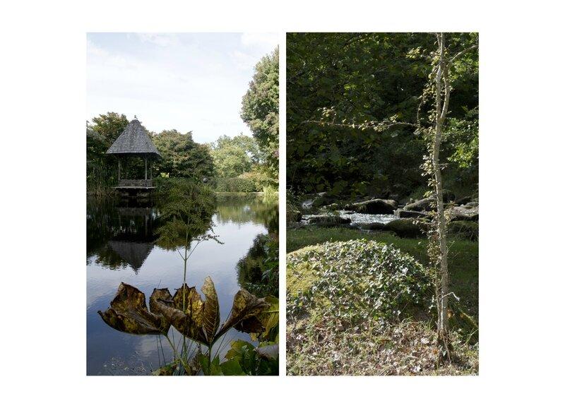 15-10-12, Arboretum de la Sédelle (6)