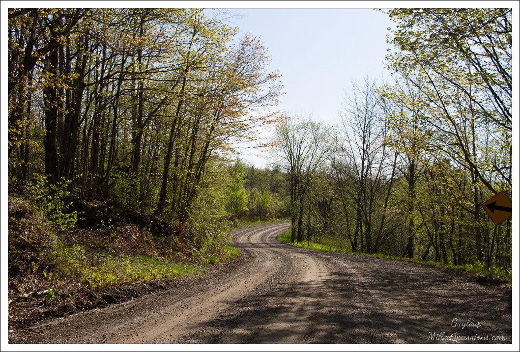 Un chemin qui n'en finit pas - A path that never ends