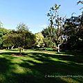 Bois-de-Coulonge-Arboretum-15