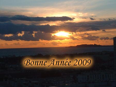 bonneannee