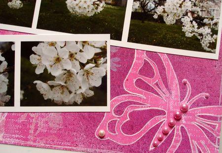 La_m_lodie_du_printemps__4_