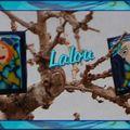 Sans titre 1bagues bleues