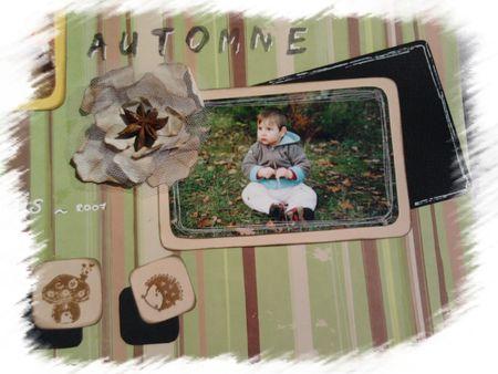 _t__automne_d_tail_1