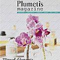 Découvrez plumetis magazine