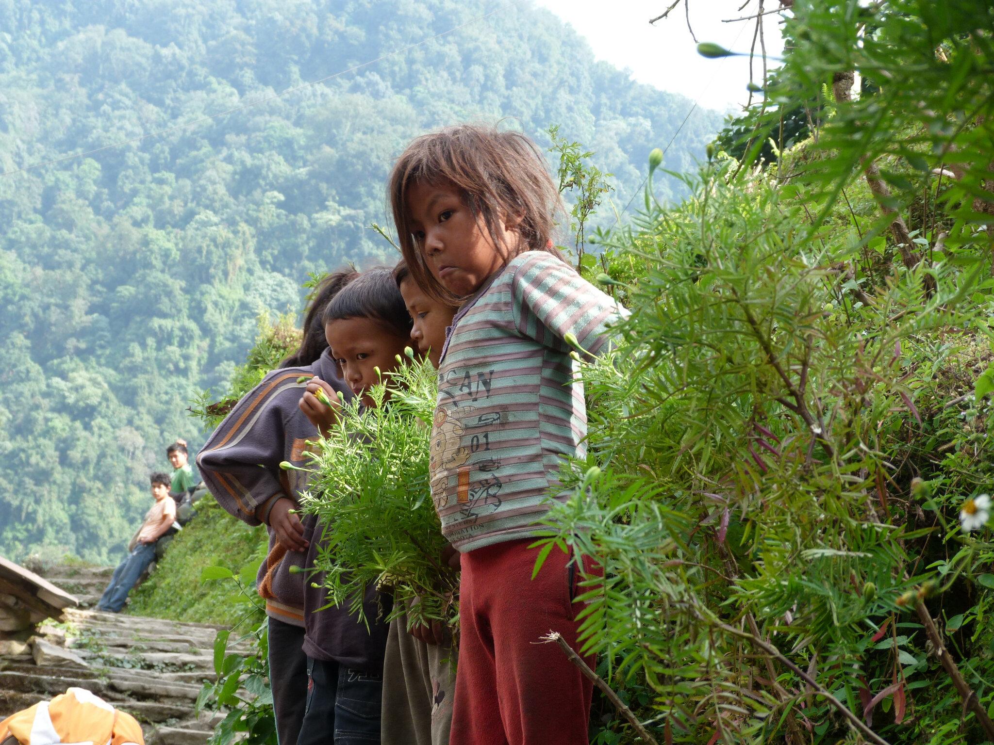 ORPHELINATS ET TOURISME HUMANITAIRE AU NEPAL