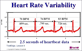 HEART RATE 1