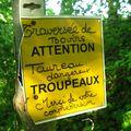 Montlauzun_Aube Nouvelle_23
