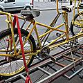 vélos jaunes_6734