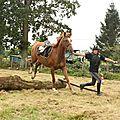 équitation de pleine nature - rallye équestre (141)