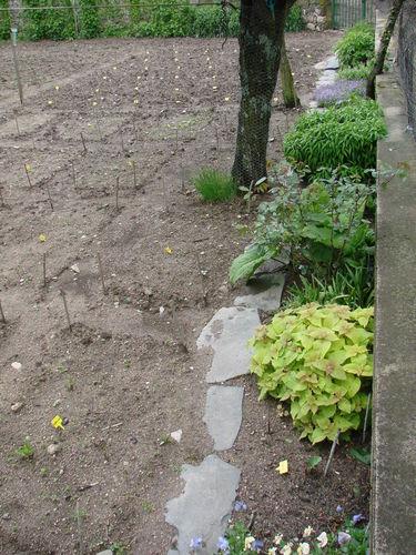 2008 05 30 Une partie de mon jardin