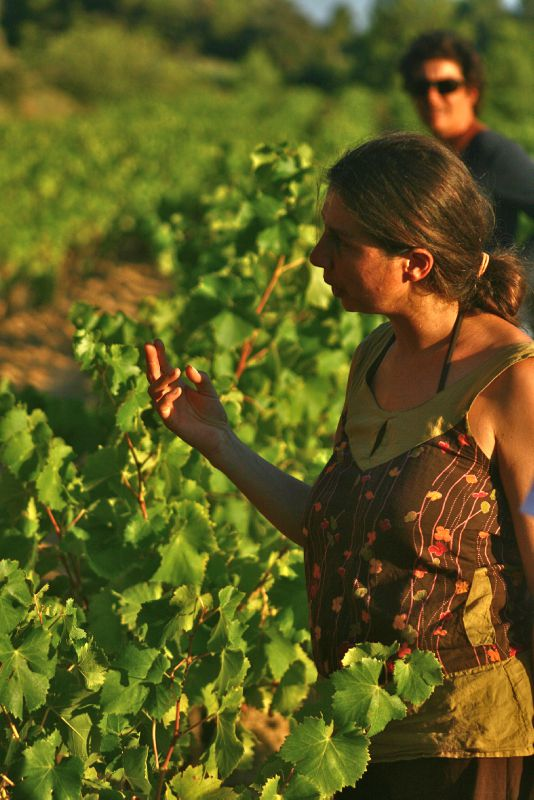 moi dans la vigne