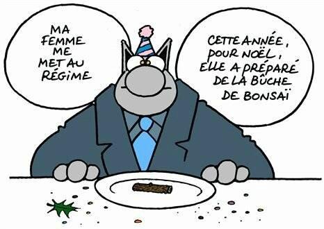 Pour Noel Le Chat De Geluck Est Au Regime Le Blog Eclectique De Mimi