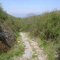 Sentier vers Molinesca