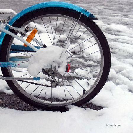 roue neige 01