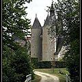 Château du moulin (41)