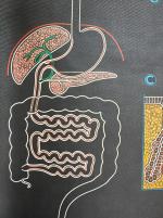Affiche-AUZOUX-Tube-digestif-7-muluBrok-Vintage