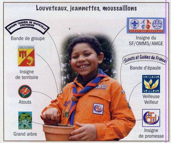 insignes unité louvetaux jeannettes