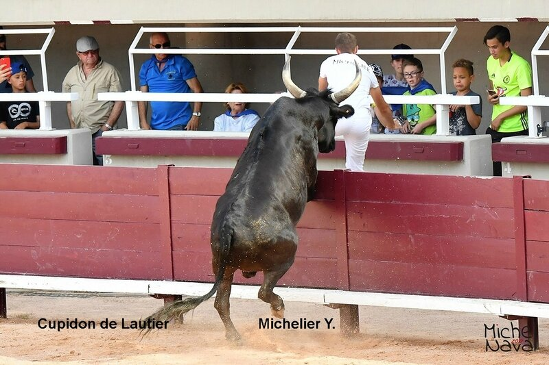 ISTRES 23