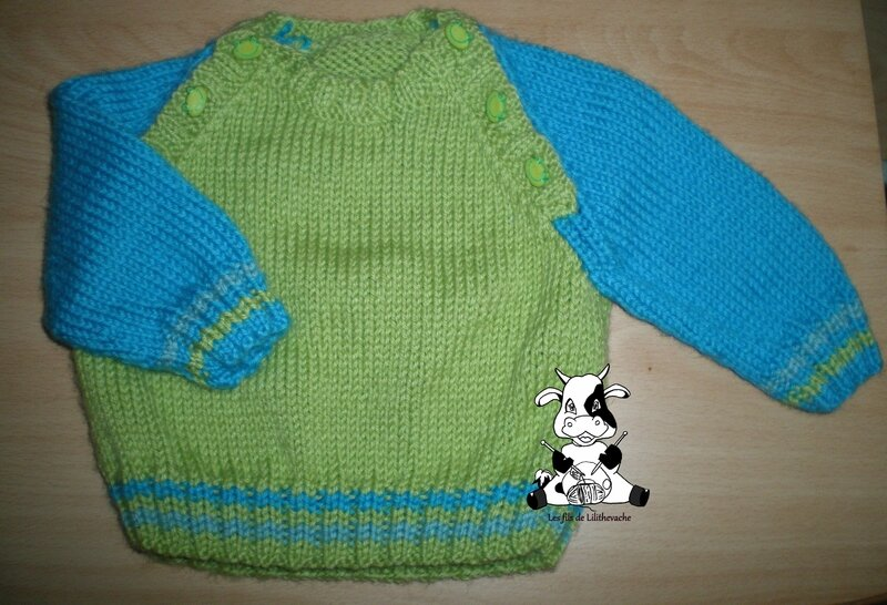 pull grenouille (3)