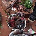 Puissant rituel d'envoûtement d'amour très puissant marabout africain sibissaba