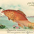 Gentils poissons