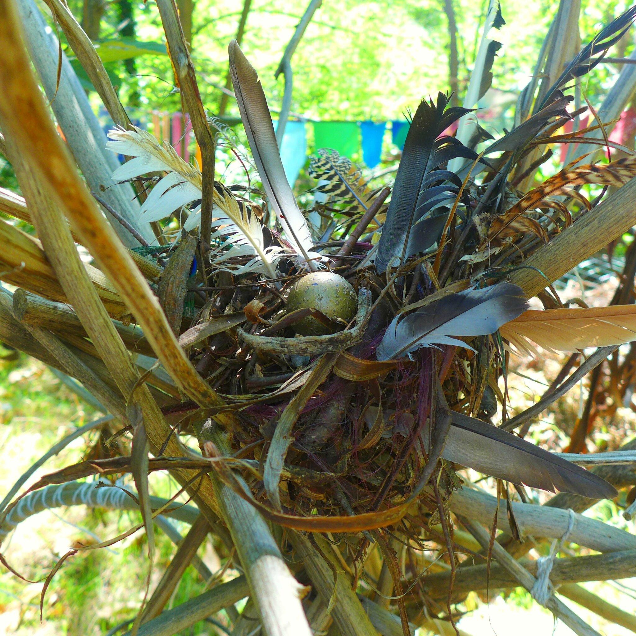 habitat d'un oiseau inconnu yurtao