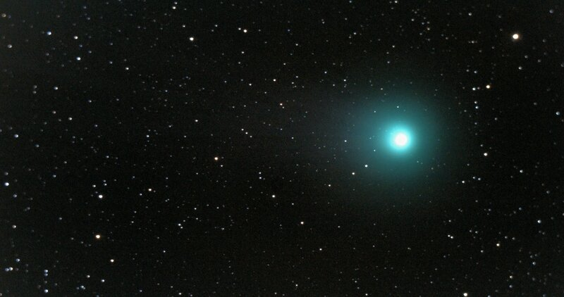 lovejoy no2