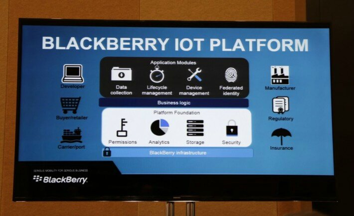 backberry-iot-and-wearables-710x434