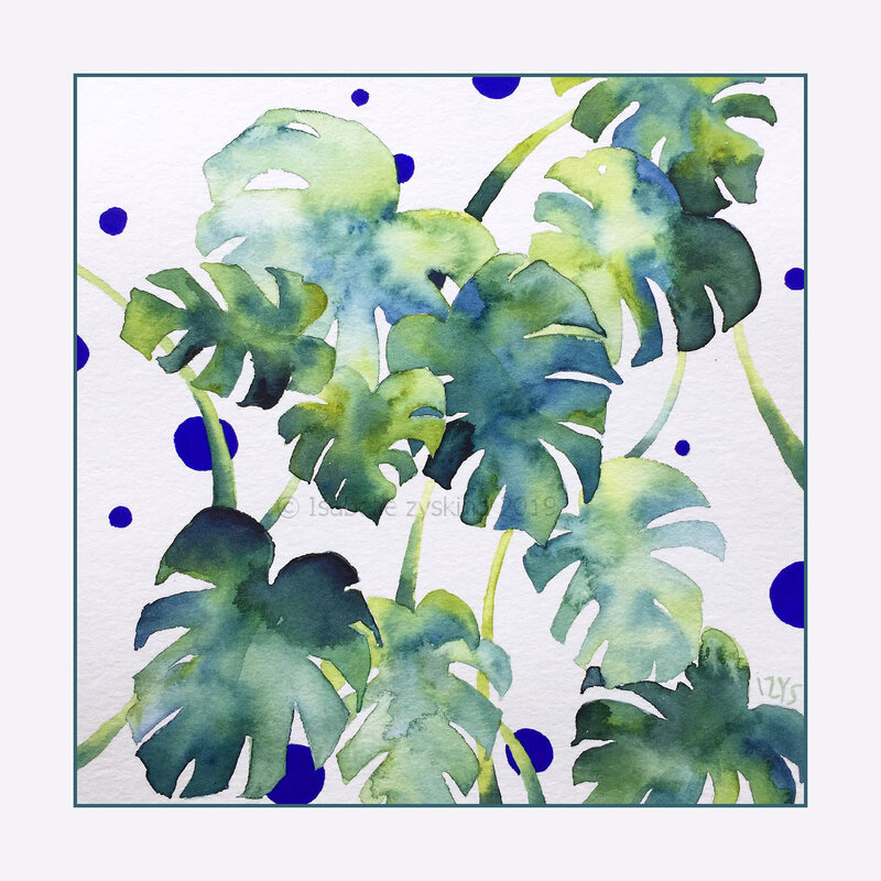 Monstera de juin w30x30 0619
