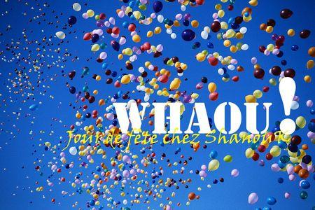 Jour de fete - Marque ShanouK