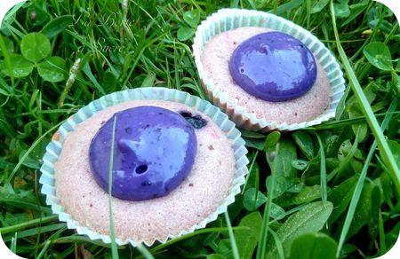 Cupcakes_myrtilles_2