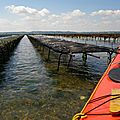 Baie de Morlaix009