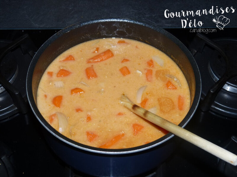 Soupe indienne (10)