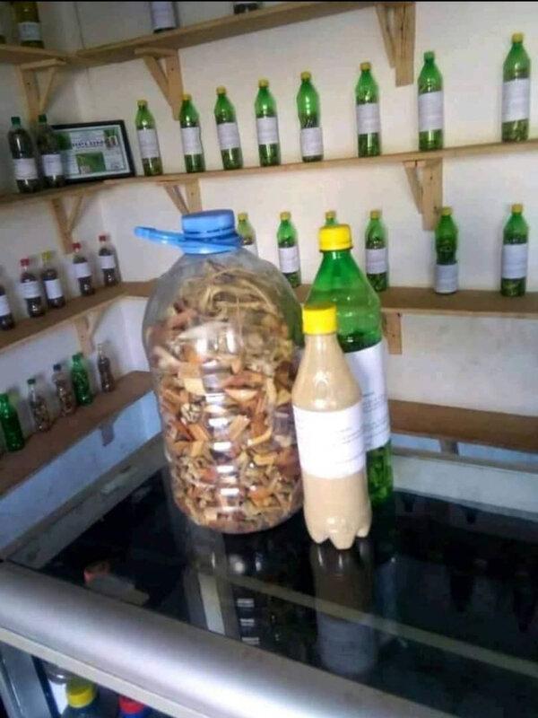 Traitement africain avec les plantes: remède de l'impuissance sexuelle, éjaculation précoce DU MEDIUM malayikan