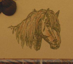 carte cheval 2 gp