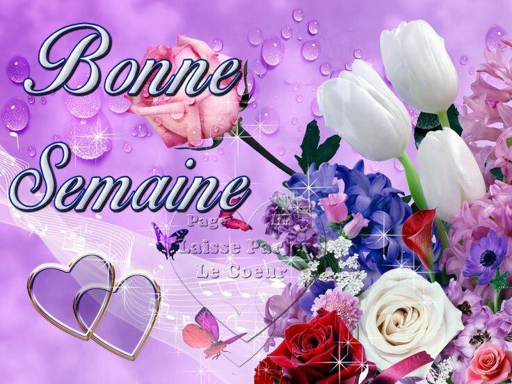 0 b s bouquetBPat19