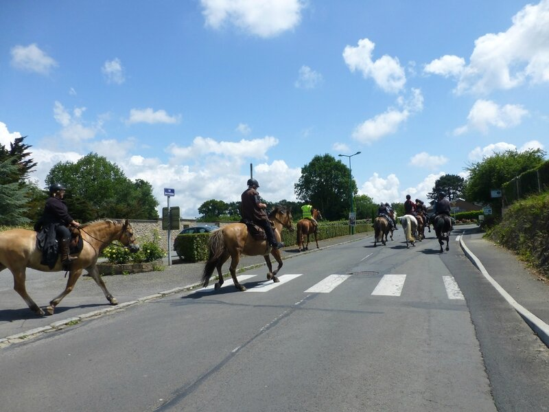 RandoBaie 2014 - balade équestre sur la piste des JEM (189)
