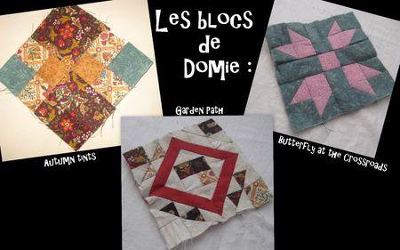 Blocs Domie 1
