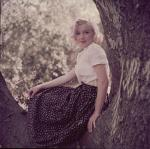1953-09-02-LA-Laurel_Canyon-Tree_Sitting-030-1a