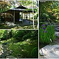 Japanese Garden Seattle 5