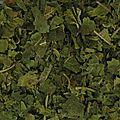 Achat feuilles de murier sur toobeautyfood