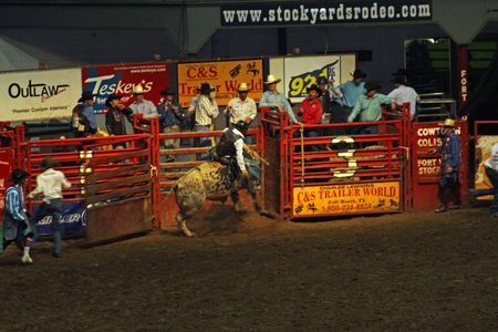 Rodeo_24