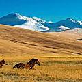 1-KazakhSTAN
