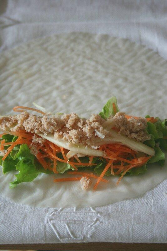 Rouleaux de printemps au crabe et fenouil 1