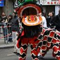 Nouvel An Chinois_France (6)