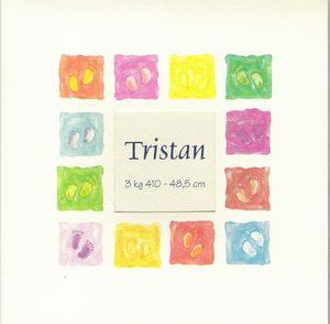 tristan_001