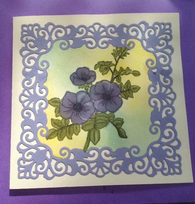 fleurs bleu lavande